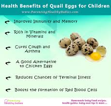 health benefits of quail eggs for children