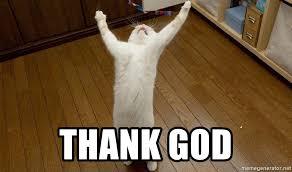 Thank God Meme - thank god praise the lord cat meme generator