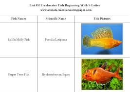 freshwater fish list starting with s animals name a to z
