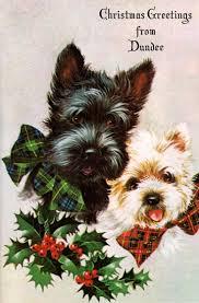 144 best scotties images on scottie dogs scottish