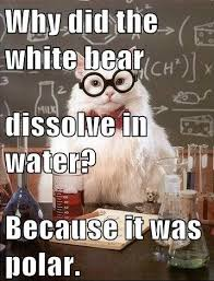 Chemistry Memes - 86 best ap chemistry memes images on pinterest science jokes
