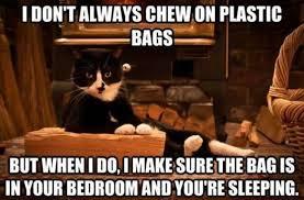 Meme Bag - plastic bag meme