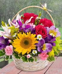 butterfly basket floral arrangement in minneapolis mn schaaf floral