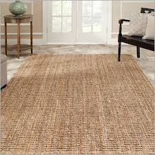 Indoor Outdoor Rugs Lowes Lowes Sisal Rug Uniquely Modern Rugs