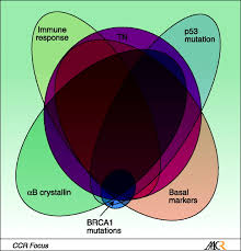 triple negative breast cancer risk factors to potential targets
