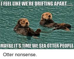Sea Otter Meme - feel like were drifting apart maybeit s time we sea otter people