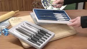 kitchen knife set six serrated utility steak knives radacutlery