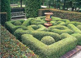 Kitchen Gardens Design Creating A Formal Garden In A Small Space Acc Distribution