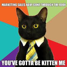 Meme Marketing - marketing sales have gone cat meme cat planet cat planet