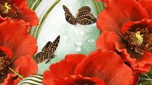 flower wild fleurs summer september butterflies bright green