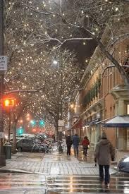fort collins christmas lights christmas lights pinterest christmas lights
