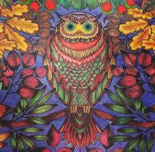 Owl Coloring Ideas 17 Best Images About Secret Garden On Pinterest Inspirational