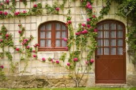 flower house including nice flowers for garden alices with ideas