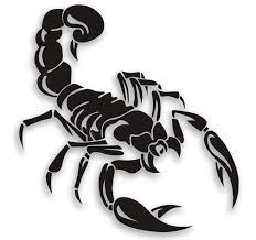 different scorpion tattoo ideas tattoos pinterest scorpion