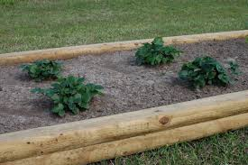Menards Bed Frame Garden Menards Raised Garden Bed Within Glorious Outdoor Amp