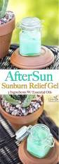 do aloe plants need sunlight homemade aftersun sunburn relief gel with essential oils
