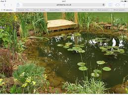 a wildlife pond for my cottage garden ponds pinterest