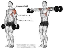 Muscles Used When Bench Pressing Lateral Raises How To Use Them In Your Workouts Gym Junkies