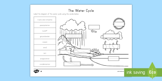 the water cycle differentiated activity sheets water cycle