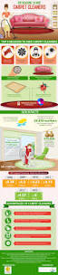 top reasons to hire carpet cleaners infographic nybrite
