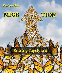 raise monarch butterflies for the migration supply list ideas