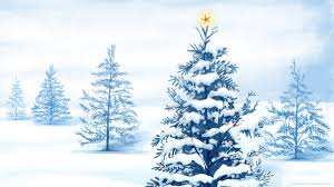 100 christmas tree in the bible the bible and christmas