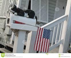 cassetta della posta americana cassetta postale con un gatto e una bandiera americana immagine