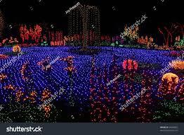 Rock Garden Bellevue by Garden Lights Bellevue Botanical Gardens Washington Stock Photo