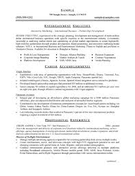 Resume Accomplishments Examples by Executive Resume Example