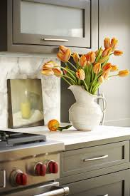 Neutral Kitchen Cabinet Colors - cabinet color counter u0026 backsplash material makes any color of