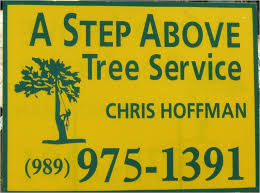 a step above a step above treeservice jpg