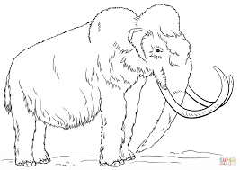 coloring page here home elephant kids drawing of an elephant