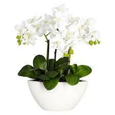 silk flower arrangements nearly natural phalaenopsis orchid white silk flower arrangement
