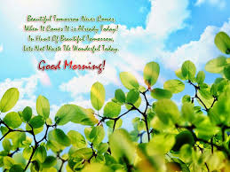 beautiful morning wallpapers with wishes and quotes allwishes in