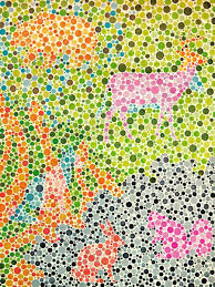 Color Blindness Medical Term 15 Best Types Of Color Blindness Images On Pinterest Color
