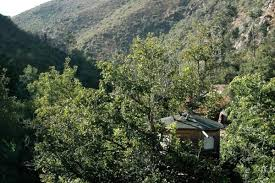 best tree houses best tree house hotels in portugal