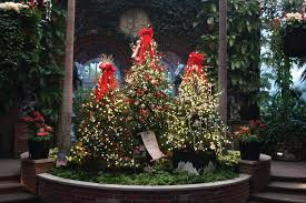 phipps conservatory christmas lights 2017 winter flower show and light garden at phipps conservatory a