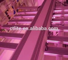 commercial led grow lights ctlite ul cob led grow light bar for commercial greenhouse and