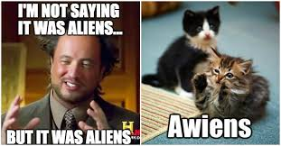 Cat Alien Meme - 5 crazy discoveries that even science can t explain yet