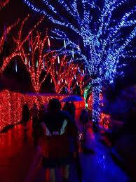 zoo lights portland oregon zoo lights walkway picture of oregon zoo portland tripadvisor