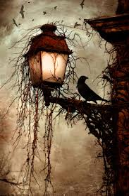 halloween raven background 137 best black and white photos images on pinterest drawings