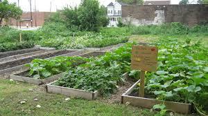 community garden build day jewishboston