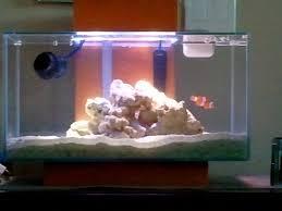 fluval edge marine light 1st fluval edge saltwater setup aquarium journals nano reef com