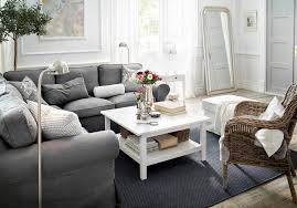 Ikea Living Room Rugs Living Room Ikea Design And Ideas Extraordinary Storage Hacks
