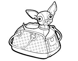 Coloriage de Chihuahua voyage pour Colorier  Coloritoucom