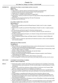 planner analyst resume samples velvet jobs