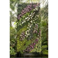 decorative vertical garden wall at rs 135 square feet green