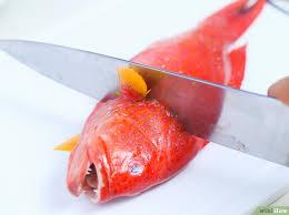 d馭inition de pocher en cuisine 3 ères de pocher du poisson wikihow