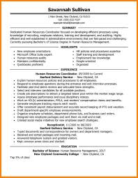 human resource resume examples resume human resource richard iii ap essay resume human resource