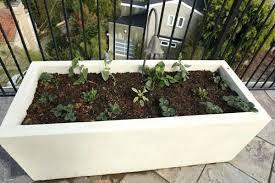 large concrete planter large concrete planter box eatatjacknjills com